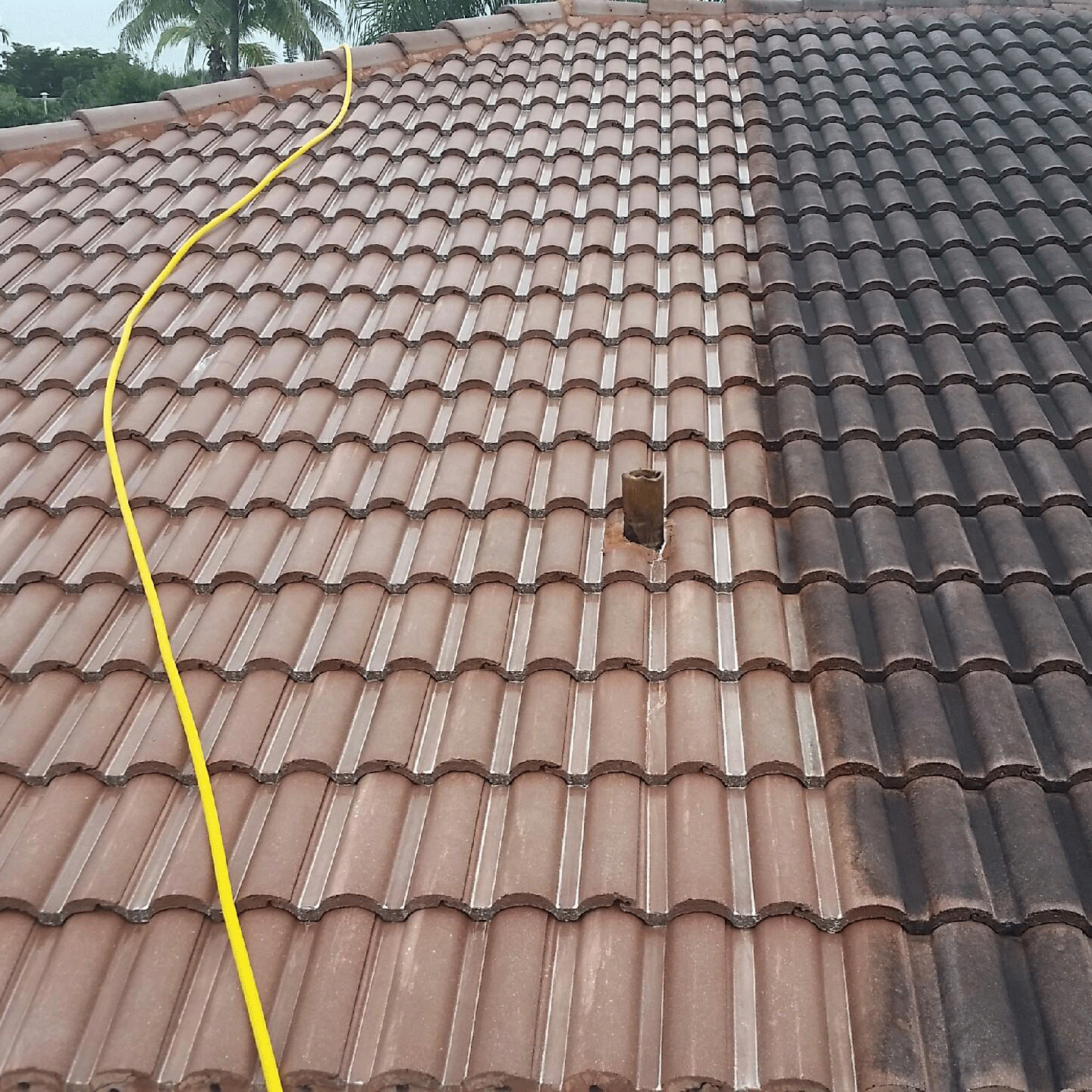 Before-and-After-Roof-Cleaning-Service---Soft-Wash